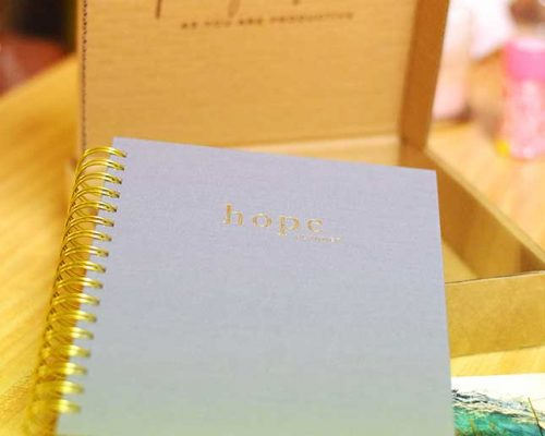 Get Organized With The Hope Planner